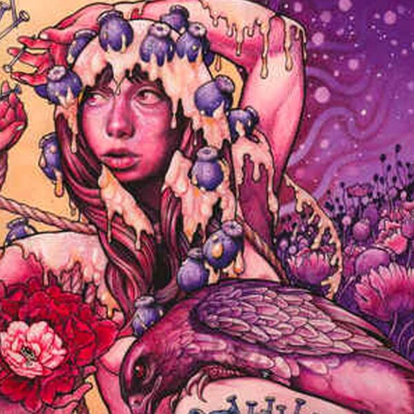 BARONESS Try to Disappear (picture LP)